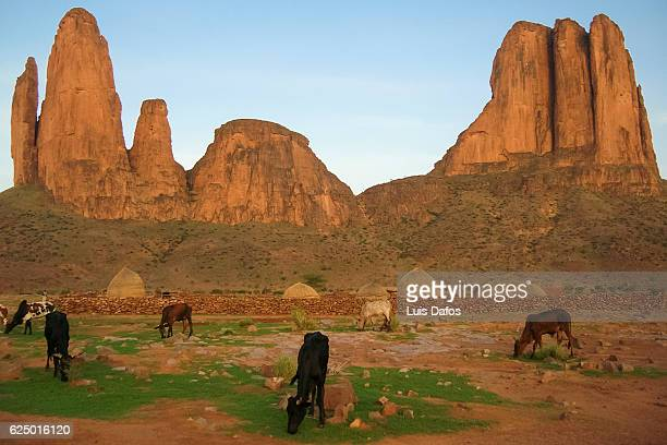 hand of fatima rock, hombori - mali stock pictures, royalty-free photos & images