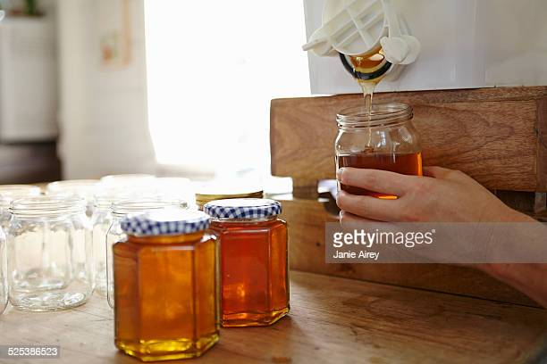 hand of female beekeeper in kitchen bottling up filtered honey from beehive - 40 44 jaar stock pictures, royalty-free photos & images