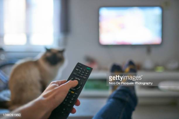 hand of man pointing remote control at working television screen - television stock pictures, royalty-free photos & images