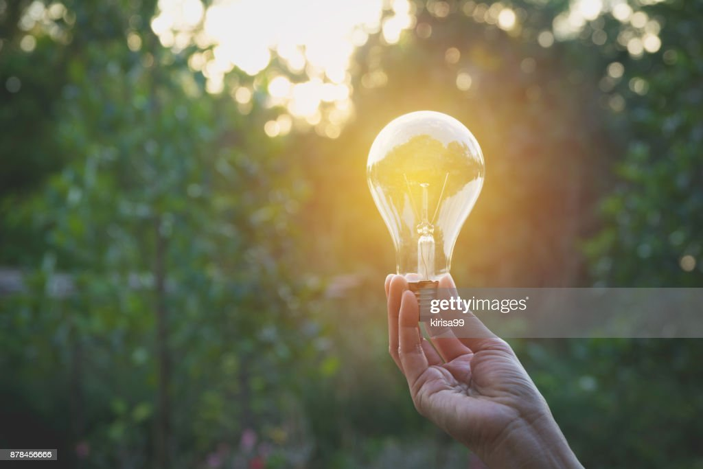 Hand Of Person Holding Light Bulb For Idea And Creativity Success Solar Energy Concept