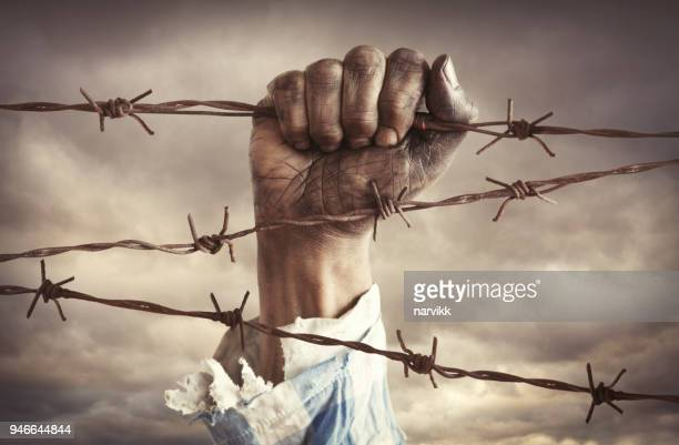 hand of refugee holding barbed wire - concentration camp stock photos and pictures