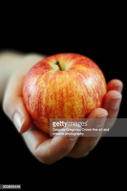 hand offering an apple - gregoria gregoriou crowe fine art and creative photography fotografías e imágenes de stock
