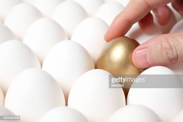 Hand on golden egg in tray