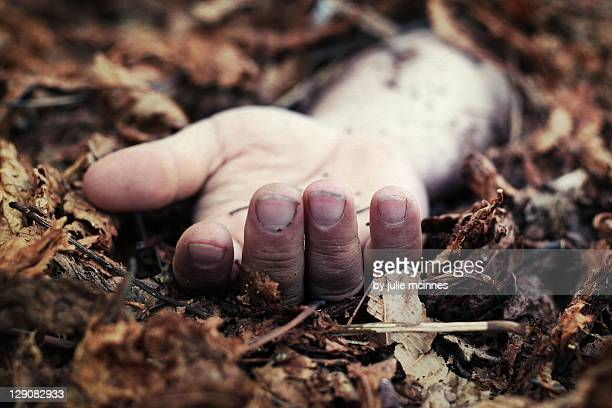 hand on leaves - shock tactics stock pictures, royalty-free photos & images