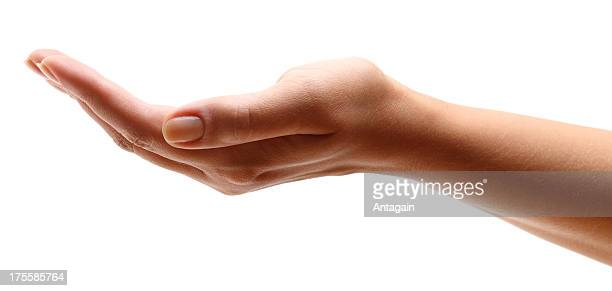 hand open - hands cupped stock pictures, royalty-free photos & images