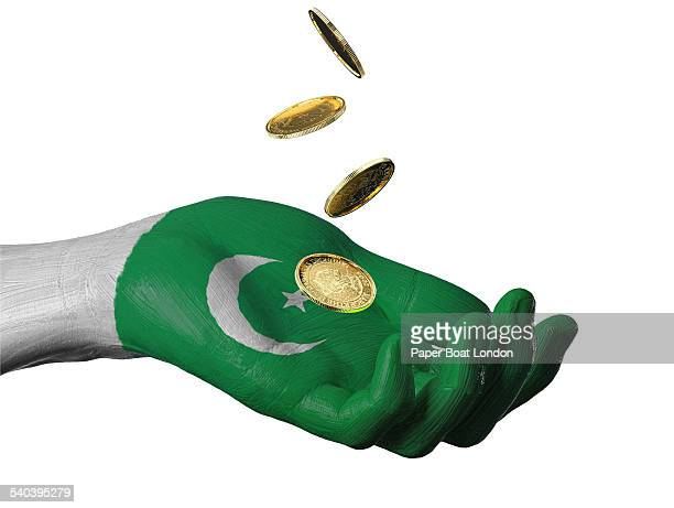 hand painted flag of pakistan with gold coins - pakistani flag stock photos and pictures