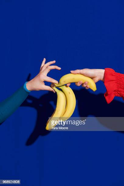 hand picking banana - partage photos et images de collection