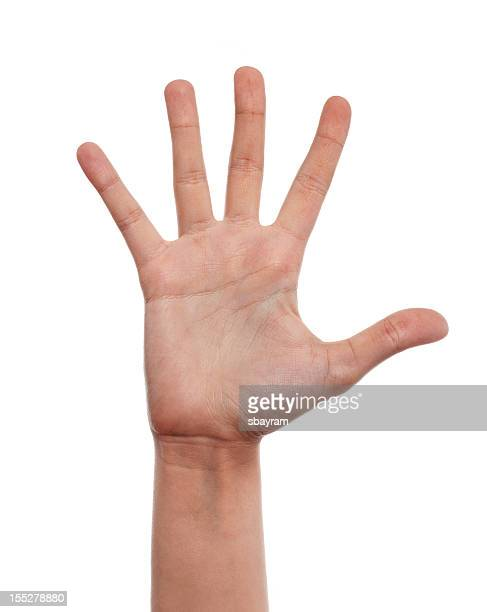 hand - number 5 stock pictures, royalty-free photos & images
