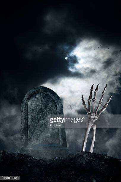 hand - human skeleton stock pictures, royalty-free photos & images