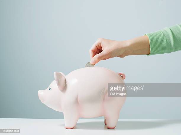 hand placing coin in piggy bank - piggy bank stock photos and pictures