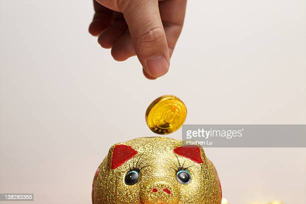 Hand putting gold coin into piggy bank
