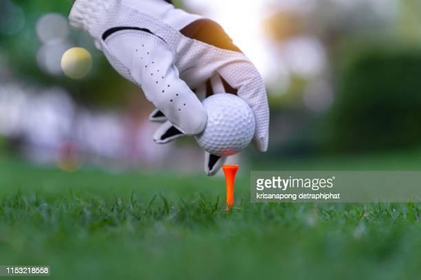 hand putting golf ball on tee in golf course - golftee stock-fotos und bilder