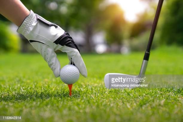 hand putting golf ball on tee in golf course - teeing off stock pictures, royalty-free photos & images