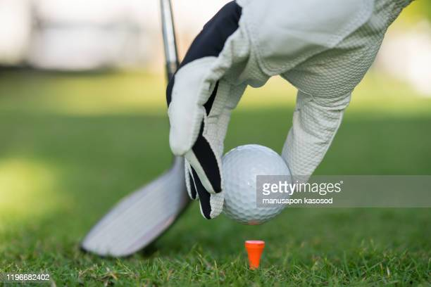 hand putting golf ball on tee in golf course - golpear desde el tee fotografías e imágenes de stock