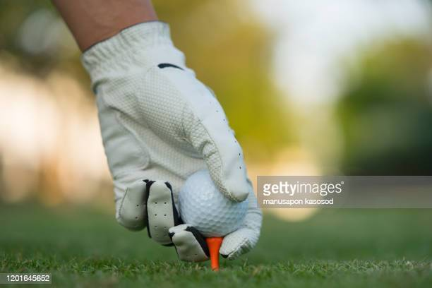 hand putting golf ball on tee in golf course. - 1910 1919 stock pictures, royalty-free photos & images
