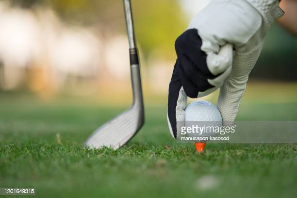 hand putting golf ball on tee in golf course. - hitting stock pictures, royalty-free photos & images