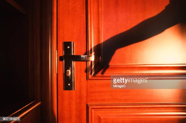 Hand Shadow Reaching Door