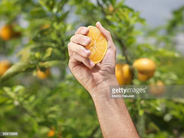 Hand Squeezing A Halved Orange