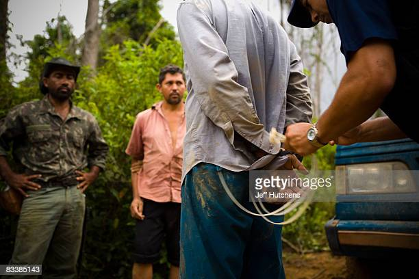 Hand ties are fastened around men under arrest for illegal poaching as they await their fate at the hands of IBAMA the Brazilian government's...