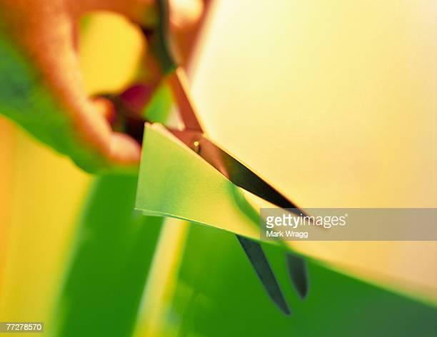 Hand using scissors to cut paper