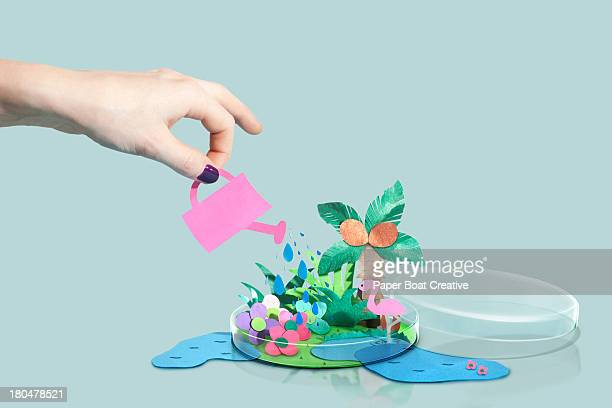 hand watering a paper craft world in petri dish - man made object stock pictures, royalty-free photos & images