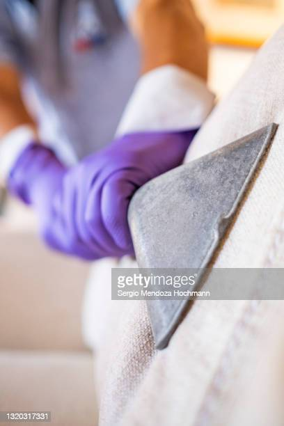 hand with a purple protective glove cleans a sofa's upholstery with a vacuum - industrial hose stock pictures, royalty-free photos & images