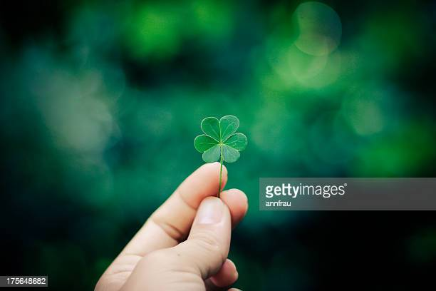 hand with clover and green background - 後ろボケ ストックフォトと画像