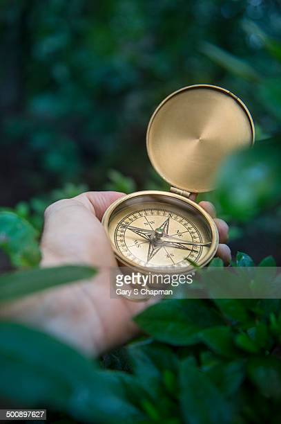 Hand with compass in jungle