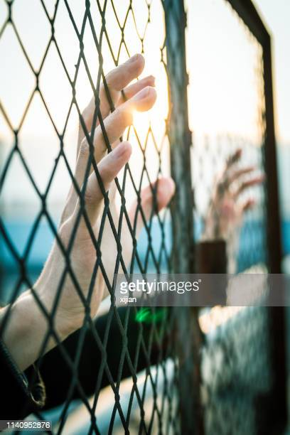 hand with fence - deportation stock pictures, royalty-free photos & images