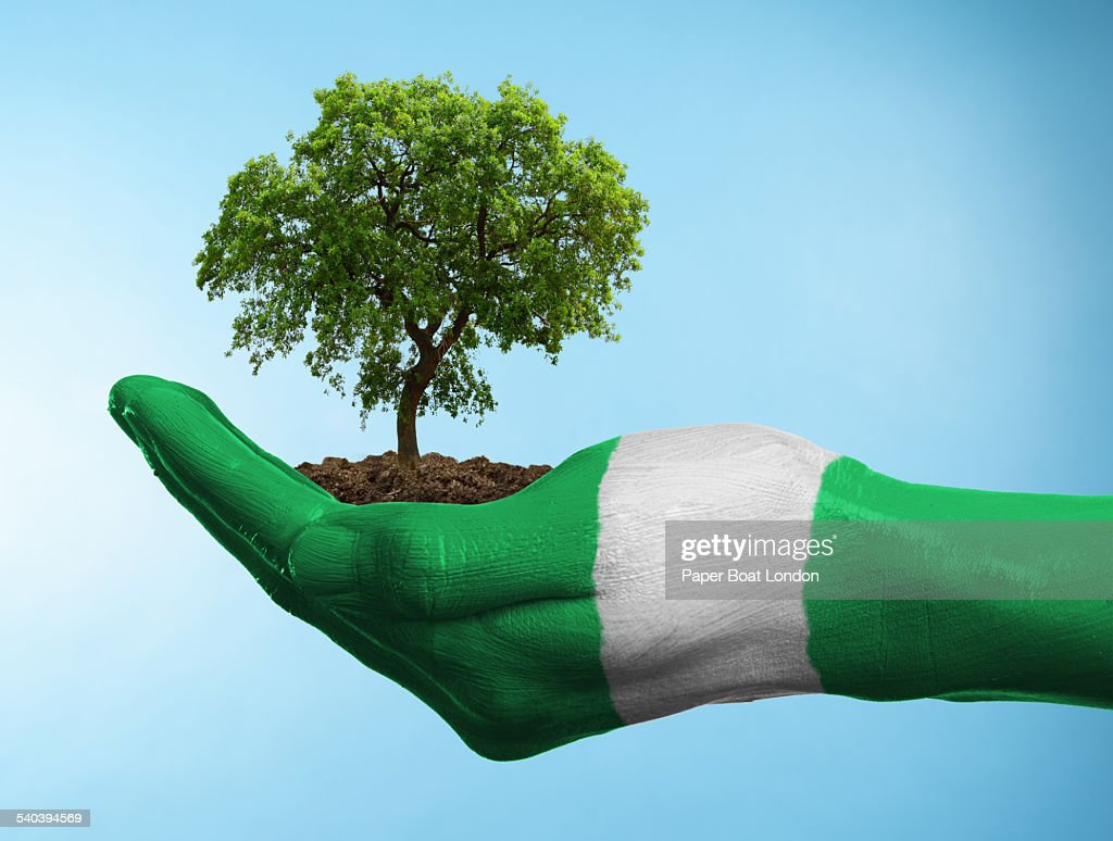 Hand with flag of Nigeria holding a tree