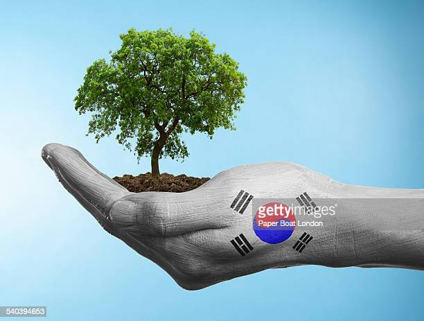 Hand with flag of South Korea holding a tree