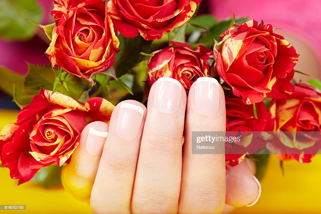 Hand with french manicured nails and red rose flowers : Foto de stock