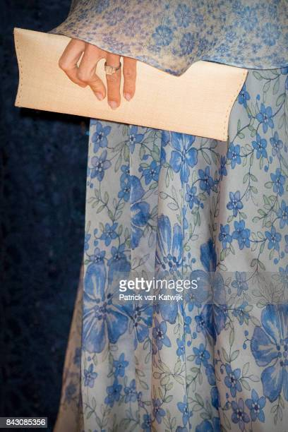 Handbag of Queen Maxima of The Netherlands during the benefit gala dinner for the Princess Maxima Center for childrenÕs oncology in the...