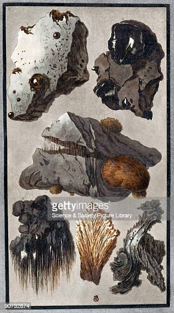 Handcoloured etching by Peter Fabris One of five illustrated plates from the 1779 supplement to William Hamilton's study of Italian volcanoes 'Campi...