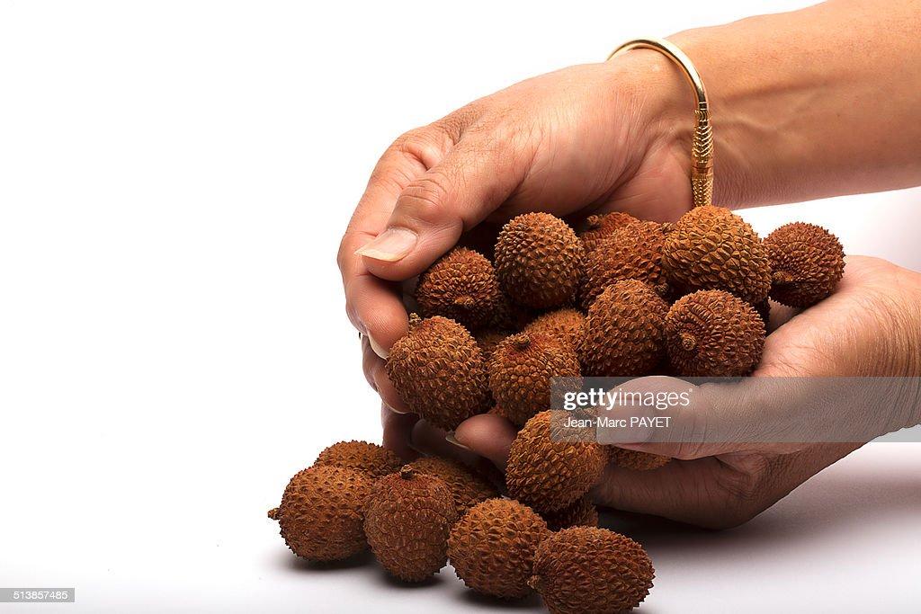 Handful of litchi : Photo