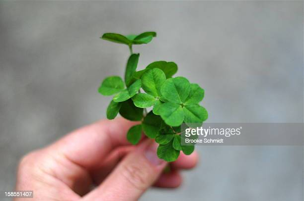 Handful of luck