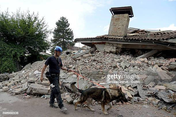 A handler and rescue dog walk past an earthquake damaged property on August 31 2016 in Amatrice Italy The region was struck by a powerful 62magnitude...