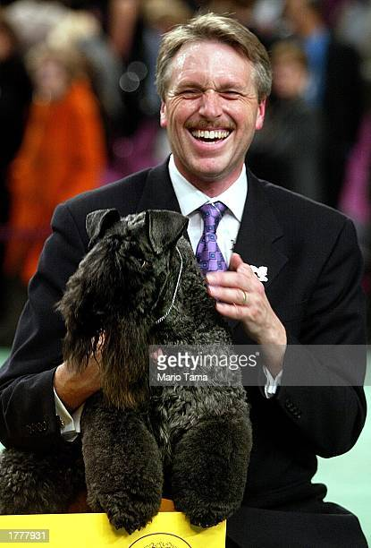 Handler Bill McFadden holds the Kerry blue terrier Torums Scarf Michael commonly known as Mick after the dog won the Best of Show award on the final...