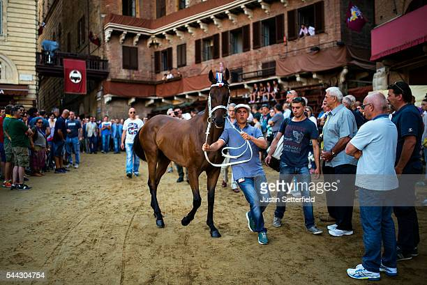 A handler guides his horse into the Piazza as his Contrada follow behind ahead of a trial race of the historical Italian horse race of the Palio Di...