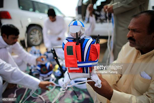 A handler prepares a robotic jockey ready to be strapped to a camel at the Dubai Camel Racing Club during the Al Marmoum camel racing season on...