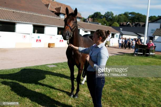 A handler presents son of Lope de Vega and Black Dahlia from The 'Haras des Monceaux' and sold for 900000 euros during during the yearlings sales one...