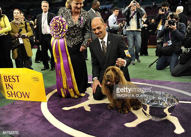 Handler Scott Sommer poses for pictures with Stump the Sussex Spaniel after winning 'Best In Show' during the 2009 133rd Westminster Kennel Club dog...