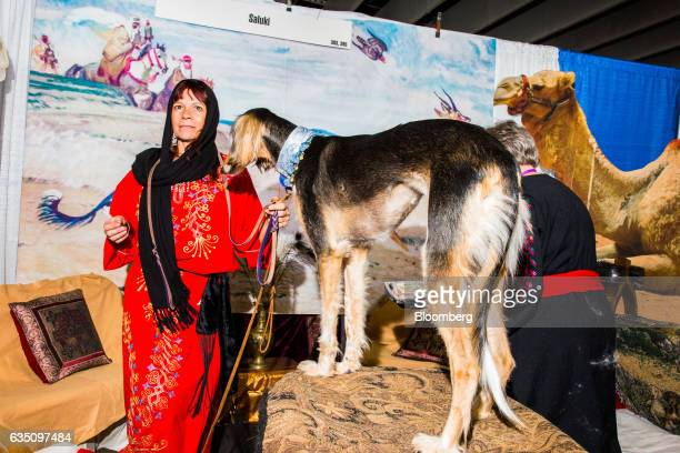 A handler stands for photograph with her Saluki dog during the annual Meet the Breed event ahead of the 141st Westminster Kennel Club Dog Show in New...
