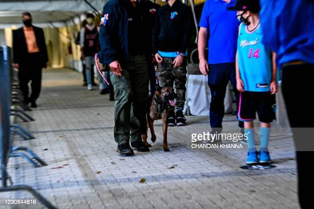 Handler walks with a specially trained dog that detects coronavirus in people as it screens fans at the American Airlines Arena prior to the NBA...