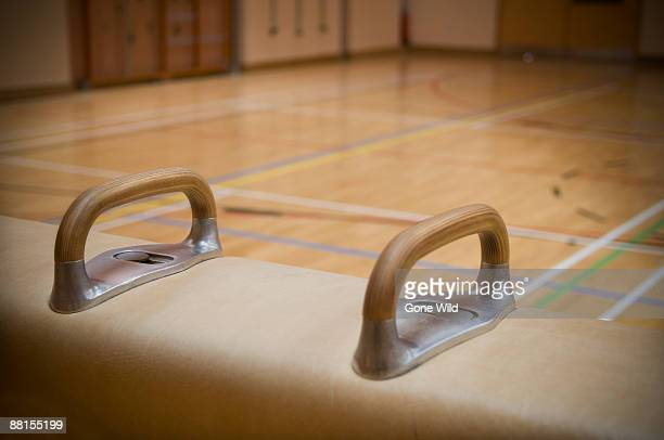 Handles on vaulting horse in gymnasium.