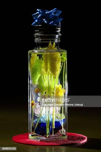 Handmade Herbarium for Interior/Home Decor