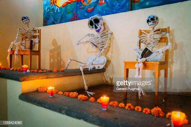 """handmade papier mache day of the dead human skeleton figures in oaxaca (oaxaca state, mexico) - """"gerard puigmal"""" stock pictures, royalty-free photos & images"""