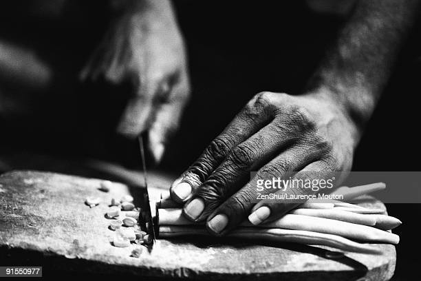 hands cutting vegetables - black and white vegetables stock photos and pictures