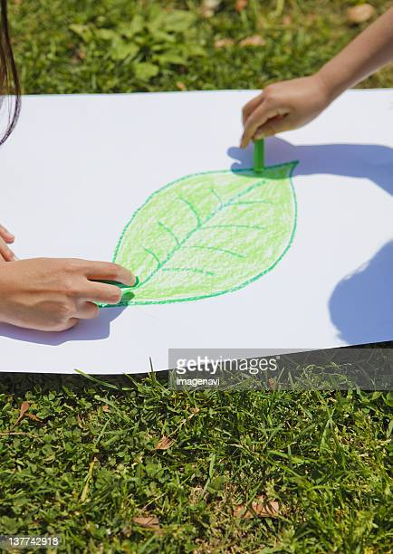Hands drawing leaf