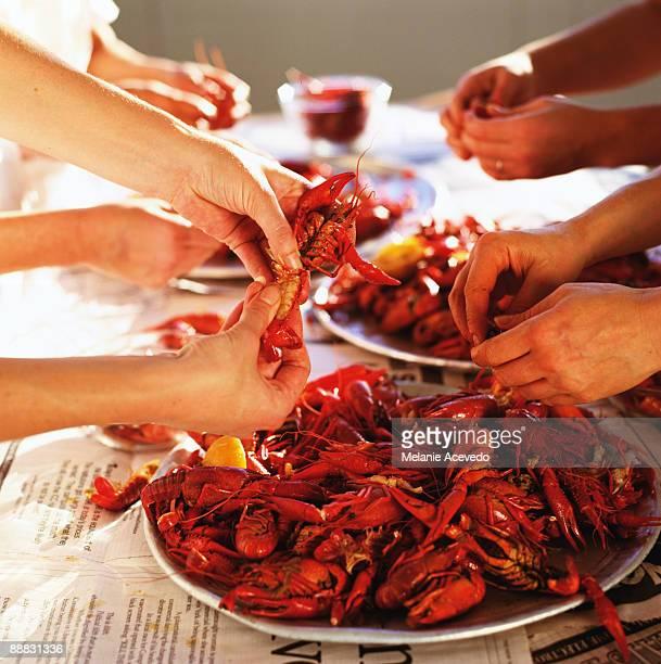 Hands eating crayfish
